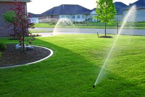 Sprinkler 101907 211
